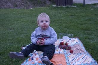 Little Baby Henry