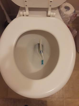 accidently dropped my toothbrush in the toilet :(